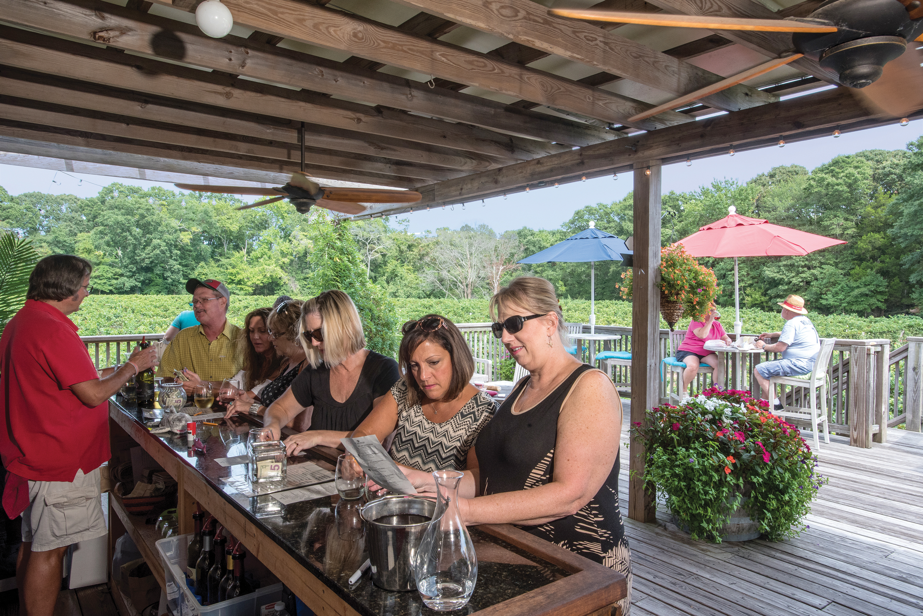Cape May Winery Events Calendar